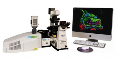 UltraVIEW VOX 3D Live Cell Imaging System